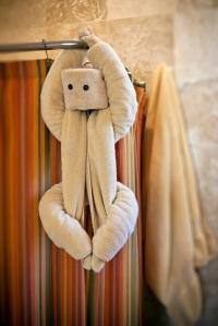"""""""Shower Monkey"""""""